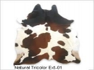 Cow Rugs